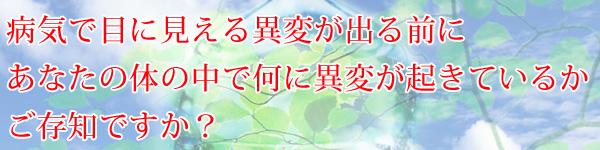 seimei_zu01